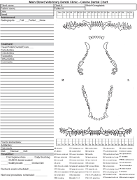 Pfizer Canine Dental Chart Download Oral Formula One For Free