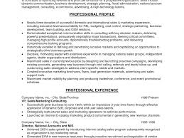 Download Profile Or Objective On Resume Haadyaooverbayresort Com