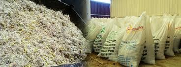 Resultado de imagen para harina  de plumas