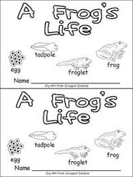 furthermore Free Printable Life Cycle Frog   Social Studies and Science as well  also FREE Printable Worksheets – Worksheetfun   FREE Printable also There Was an Old Lady Who Swallowed a Frog  with a Freebie besides  as well  in addition 207 best Frog Theme Preschool images on Pinterest   Frog theme moreover Frog Preschool Printables additionally  as well Lifecycle of tadpole to frog    Kids Activities    Pinterest. on frog sequence worksheet kindergarten