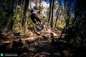 essay mountain biking  essay mountain biking