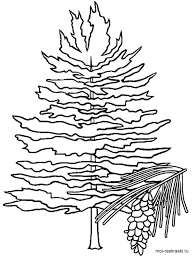 Small Picture Flag Of Idaho Coloring Page Free Printable Coloring Pages Coloring