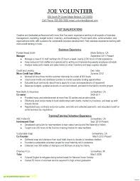 Resume Format English New Resume In English Sample How To Write A In Example English Resume
