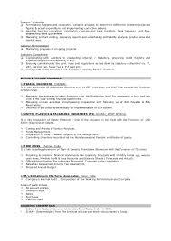 director finance resume example