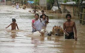 flood essay essay help flood victims buy original essays online  flood in assam essay flood in assam