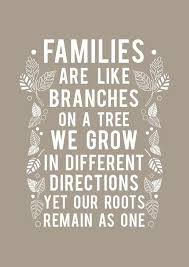 Family Time Quotes Extraordinary Family Quotes Short Love My Family Sayings
