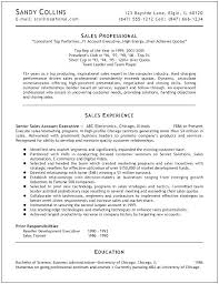 It Professional Resume Examples Unique It Professional Resume Template Resume Samples It Professionals With
