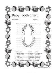 Download Baby Teeth Chart 34 Tooth Chart Teeth Baby Book