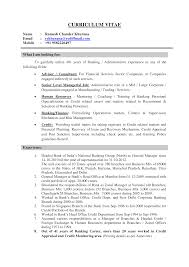 Cv Guidelines Sample Corporate Banking Administrative Cv Templates At
