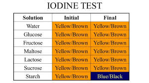 Iodine Color Chart Tests For Specific Carbohydrates Seliwanoffs Test Bials