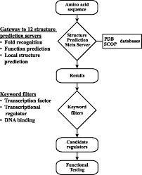 Identification And Functional Analysis Of Ct069 As A Novel
