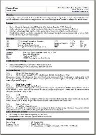 Resume Template Pages Delectable 48 Page Resume Format Two Page Resume Template Two Page Resume Sample