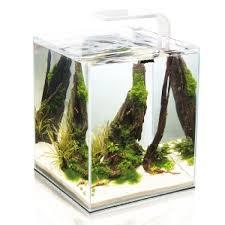 <b>Аквариум Aquael SHRIMP SET</b> SMARTPLANT - интернет-магазин ...