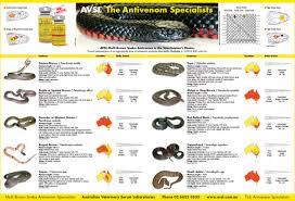 Snake Identification Chart Avsl Multi Brown Snake Antivenom Avsl