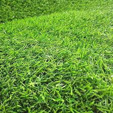 home cal artificial grass rug series landscape outdoor decorative synthetic turf pet dog area with neat