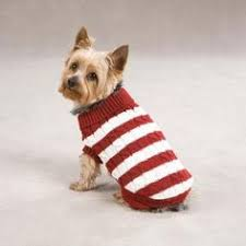 Free Knitted Dog Sweater Patterns Amazing Free Knit Dog Sweater Pattern Child Hat Knitting Pattern Knit Maxi