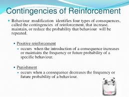 organizational behavior behavior modifications 8 contingencies of reinforcement  behaviour modification