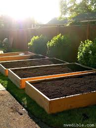 raised garden bed soil mix growing vegetables in raised garden beds all you need to know