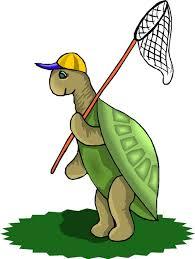 funny turtles cartoon s wallpaper murals for pre