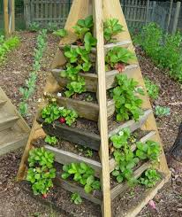 Small Picture Download Raised Bed Ideas Solidaria Garden