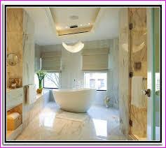 Ada Bathroom Design Ideas Custom Design Ideas