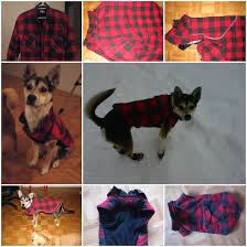 diy dog winter jacket from old shirt