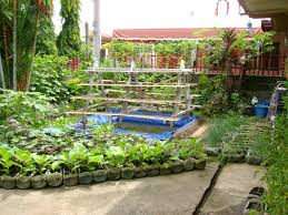 Small Picture Vegetable Garden Design In The Philippines The Garden Inspirations