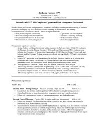 Resume For Internal Promotion Resumes Sample Job Example
