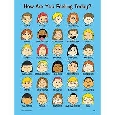 Feeling Identification Chart Feelings Chart Amazon Com
