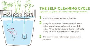 Self Cleaning Fish Tank Garden Self Cleaning Fish Tank Herb Water Garden Yellow Octopus