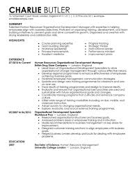 example of human resource planning resume objective statement  best organizational development resume example livecareer create my resume human resources