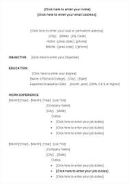 Examples Of College Student Resumes Magnificent Sample Resume College Student Letsdeliverco