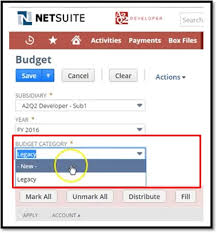 Netsuite Chart Of Accounts Best Practices Netsuite Chart Of Accounts Upload
