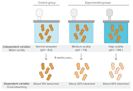 Experimental Design Biology Example Controlled Experiments Article Khan Academy