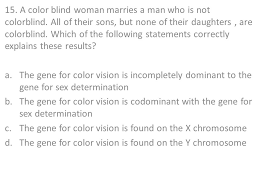 a color blind woman marries a man who is not colorblind