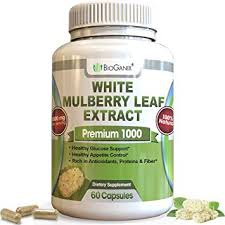 pure white mulberry leaf extract premium 1000mg no fillers natural high low blood