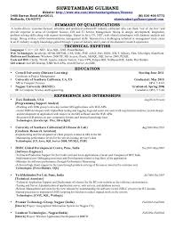 Gis Analyst Resume Sample Professional Gis Analyst Templates To Showcase Your Talent