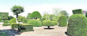 Garten Baume Johncalle Garten Sichtschutz Sichtschutz Garten Gunstig Selber Bauen Sichtschutz Garten Selber Bauenattenzaun Pflastersteine Sitzecke Terrasse