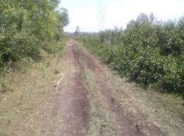 Image result for homabay bad dry weather roads
