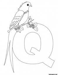 Small Picture Printable Animal Alphabet worksheets Letter Q for Queen Whydah