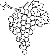 Small Picture G For Grapes Coloring Page With Leaf Pages Kids vonsurroquen