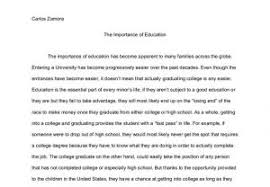 value of life essay example com  value of life essay example 6