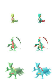 72 Ageless Pokemon Treecko Evolution Chart