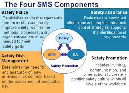 Whs Organization Chart Safety Management System Components