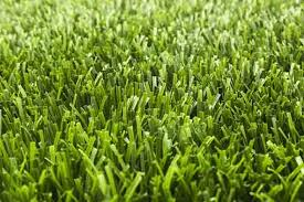 <b>Artificial Grass</b>