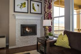 fireplace xtrordinair 564 space saver clean face gas fireplace