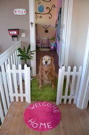 Puppy Wallpaper For Bedroom 25 Best Dog Bedroom Trending Ideas On Pinterest Dog Rooms