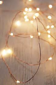 Firefly String Lights Beauteous Firefly String Lights Home Sweet Boho Pinterest Urban Lights