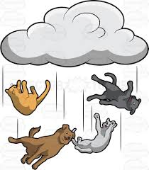 raining cats and dogs clipart. Wonderful Dogs Raining Cats And Dogs Clipart R