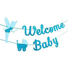 Welcome Home Baby Boy Banner Slingers En Vlaggetjes Blue Pink Boy And Girl Welcome Home